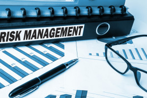 risk management professionals